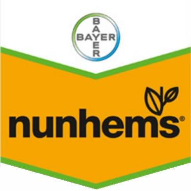 Nunhems Netherlands